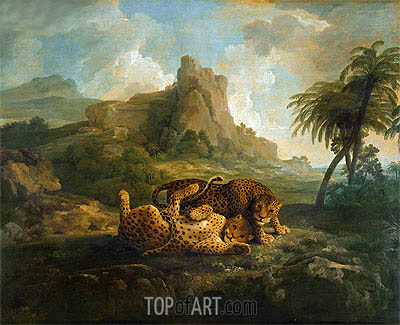 Leopards at Play, c.1763/68 | George Stubbs| Painting Reproduction