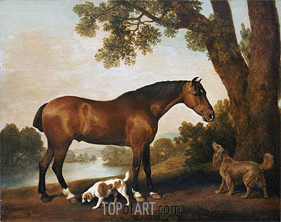 A Bay Hunter, a Springer Spaniel and a Sussex Spaniel, 1782 | George Stubbs| Painting Reproduction