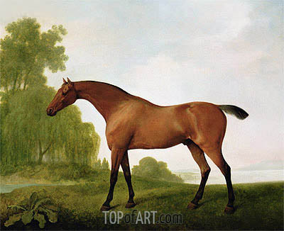 George Stubbs | A Bay Thoroughbred in a Landscape, 1801
