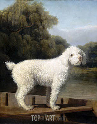 George Stubbs | White Poodle in a Punt, c.1780