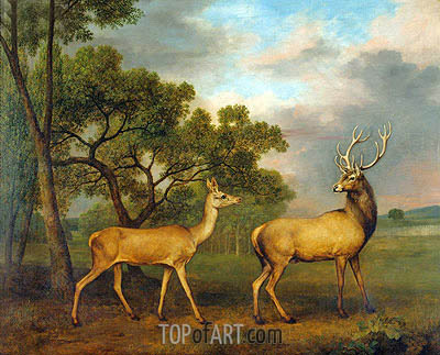 Red Deer, a Buck and a Doe, 1792 | George Stubbs | Painting Reproduction