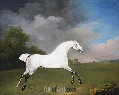 A Grey Horse, 1793 | George Stubbs| Painting Reproduction