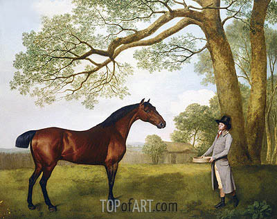 George Stubbs | John Gascoigne with a Bay Horse, 1791