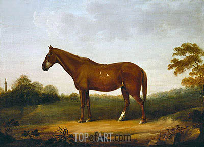 A Chestnut Cob in the Park at Gibside, c.1800/50 | George Stubbs| Painting Reproduction