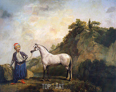 Gray Arabian with a Groom, c.1765/66 | George Stubbs| Painting Reproduction