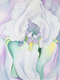 Light Iris, 1924 by O'Keeffe | Painting Reproduction