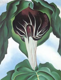 Jack in the Pulpit III, 1930 von O'Keeffe | Gemälde-Reproduktion