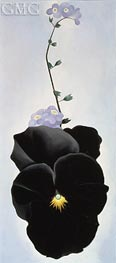 Pansy, 1926 by O'Keeffe | Painting Reproduction