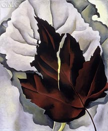 Pattern of Leaves, c.1923 by O'Keeffe | Painting Reproduction
