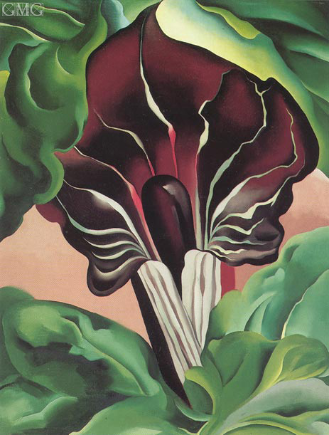 Jack in the Pulpit II, 1930 | O'Keeffe | Gemälde Reproduktion