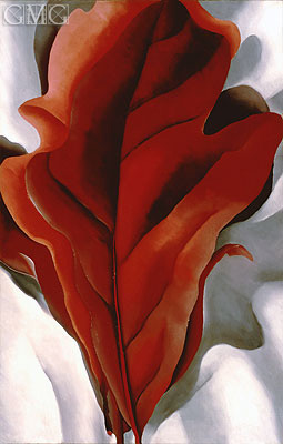 O'Keeffe | Large Dark Red Leaves on White, 1925