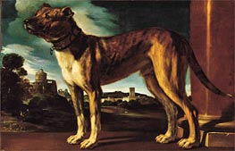 Aldrovandi Dog, c.1625 by Guercino | Painting Reproduction
