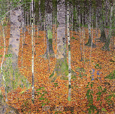 Birch Woods, 1903 | Klimt | Painting Reproduction
