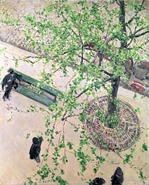 Boulevard seen from Above, 1880 by Caillebotte | Painting Reproduction