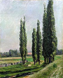 Poplars on the Riverbank at Argenteuil, undated by Caillebotte | Painting Reproduction