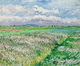 The Fields, a Plain in Gennevilliers, 1884 by Caillebotte | Painting Reproduction