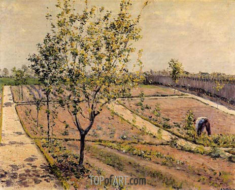 Kitchen Garden, Petit Gennevilliers, 1882 | Caillebotte | Painting Reproduction