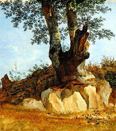 A Tree in Campagna, c.1822/23 by Heinrich Reinhold | Painting Reproduction