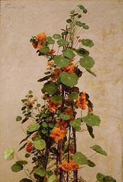 Nasturtiums, Capucines, Tropaeolum majus, 1880 von Fantin-Latour | Gemälde-Reproduktion
