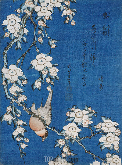 Bullfinch and Weeping Cherry Blossoms from Serie 'Flowers and Birds', 1834 | Hokusai | Painting Reproduction