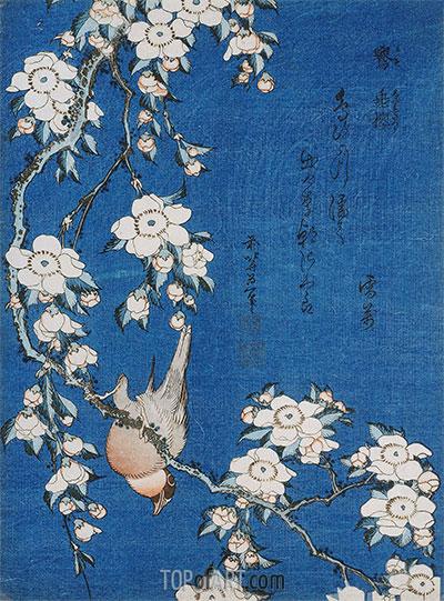 Hokusai | Gimpel und Trauerkirsche aus der Serie 'Blumen und Vögel', 1834