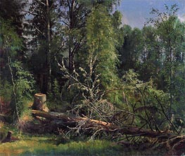 Felled Tree | Ivan Shishkin | veraltet