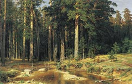 Mast-Tree Grove, 1898 by Ivan Shishkin | Painting Reproduction