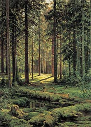 Pine Forest, Sunny Day, 1895 by Ivan Shishkin | Painting Reproduction