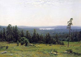 Woodland Vistas, 1884 by Ivan Shishkin | Painting Reproduction