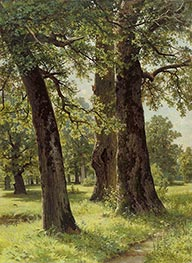 Oaks, 1887 by Ivan Shishkin | Painting Reproduction