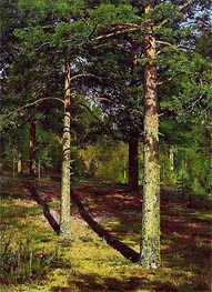 Pine Trees Lit Up by the Sun | Ivan Shishkin | veraltet