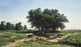 Oaks, 1886 by Ivan Shishkin | Painting Reproduction