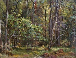 Forest, 1887 by Ivan Shishkin | Painting Reproduction