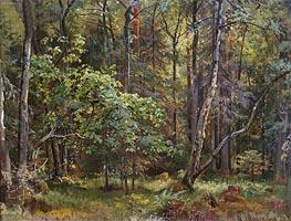 Forest, 1887 von Ivan Shishkin | Gemälde-Reproduktion