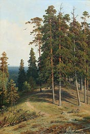Pine on a Sandy Soil | Ivan Shishkin | Gemälde Reproduktion