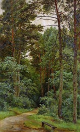 In the Woods, 1893 von Ivan Shishkin | Gemälde-Reproduktion