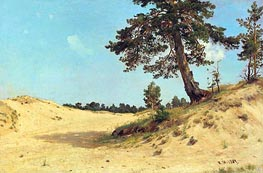 Pine on the Sand, 1884 von Ivan Shishkin | Gemälde-Reproduktion