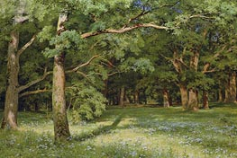 The Forest Clearing, 1896 von Ivan Shishkin | Gemälde-Reproduktion