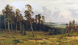 The Edge of the Forest, 1878 von Ivan Shishkin | Gemälde-Reproduktion