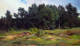 Oak Woods in Gray Day, 1873 von Ivan Shishkin | Gemälde-Reproduktion