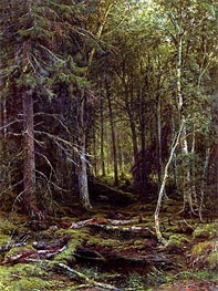 Backwoods, 1872 by Ivan Shishkin | Painting Reproduction