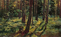 Ferns in the Forest. Siverskaya, 1883 von Ivan Shishkin | Gemälde-Reproduktion