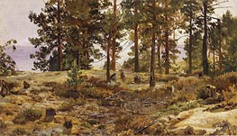 On a Sandy Soil, c.1889/90 von Ivan Shishkin | Gemälde-Reproduktion