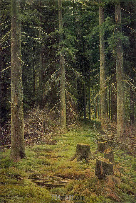 Fir-Tree Forest, 1873 | Ivan Shishkin | Gemälde Reproduktion
