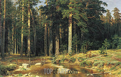 Mast-Tree Grove, 1898 | Ivan Shishkin| Painting Reproduction