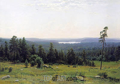 Woodland Vistas, 1884 | Ivan Shishkin| Painting Reproduction
