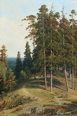 Pine on a Sandy Soil, 1895 | Ivan Shishkin| Painting Reproduction