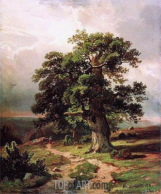 Ivan Shishkin | Oaks, 1864