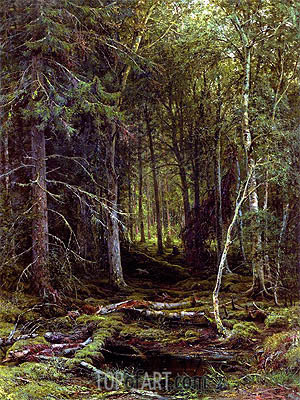 Backwoods, 1872 | Ivan Shishkin| Painting Reproduction