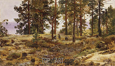 On a Sandy Soil, c.1889/90 | Ivan Shishkin| Painting Reproduction